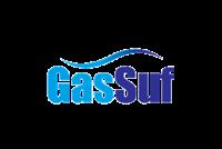 Выставка Газ в моторах'2004