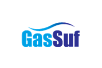 Gas supply and effective use of gas'2004