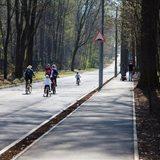 Roadway renovation