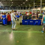 International exhibition of largest domestic cats