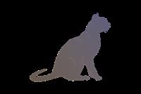Edelweiss 2015 Cat Show