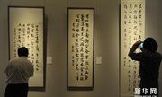 Contemporary calligraphy exhibition underway at NAMOC
