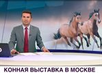 /en/exhibitions/video/mir-tv-channel-equiros-october-2017