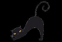 Выставка Национальная выставка кошек  «Хрустальный Кубок  Москвы»