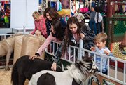 The 20th Anniversary Equiros'2018 Exhibition Launched in Sokolniki
