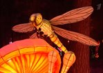 /cn/exhibitions/video/channel-one-good-morning-chinese-lantern-festival-in-sokolniki